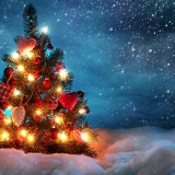 christmas in slovakia tour company